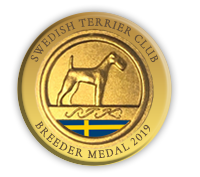 Breeder medal 2019-2020 Swedish Terrier Club